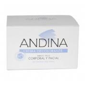 Andina crema decolorante (100 ml)